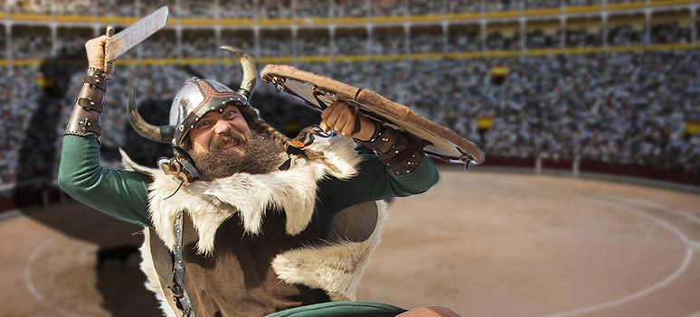 toef-viking