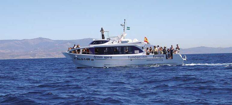 Tarifa: Hvaler og verdenshav