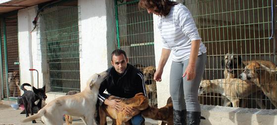 Kim Halliwell redder hunder i Spania
