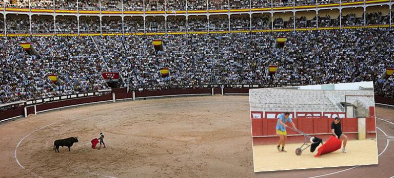 EU-lov legitimerer spansk tyrefekting