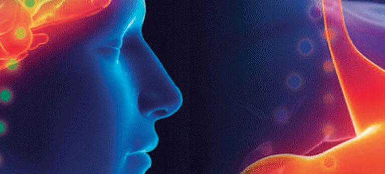 BodyTalk – om hjerne-mageforbindelsen