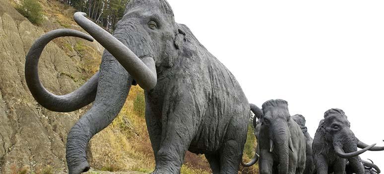 Mammut ruten og andre utdødde dyreruter