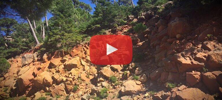 Sierra Bermeja – nasjonalpark eller ikke?