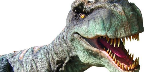 I dinosaurenes fotspor