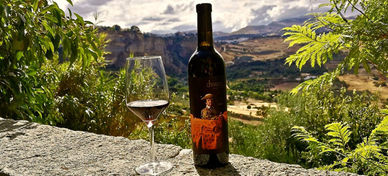 Nattlig druehøsting på Descalzos Viejos – trolig spanias mest spektakulœre vingård