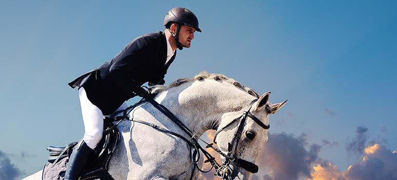 kn-hest