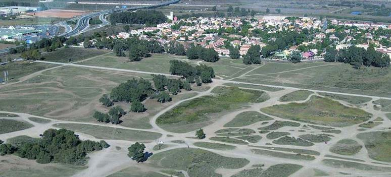 kn-sportby