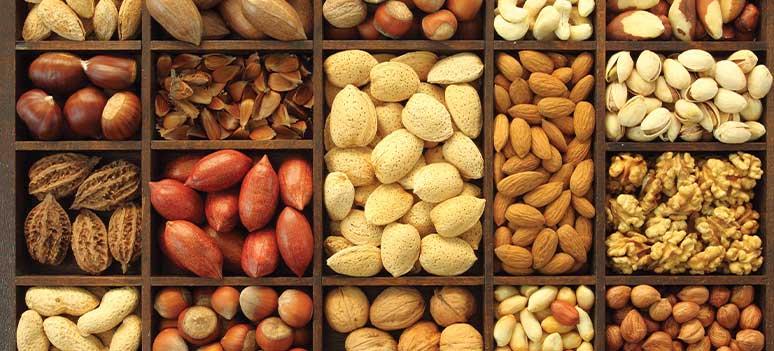 tf-nuts