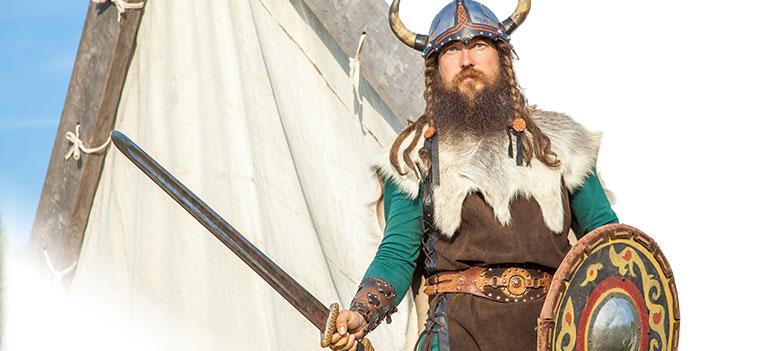 tt-viking