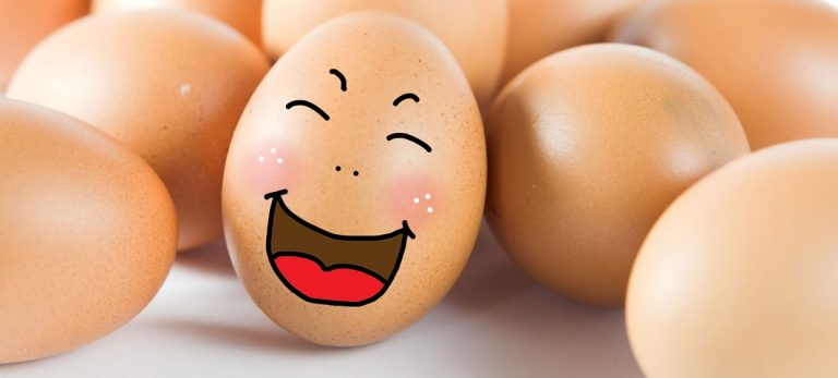 Hvorfor står ikke eggene kaldt i spanske butikker og supermarkeder?