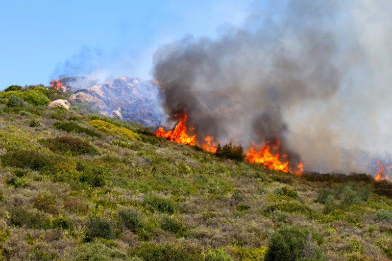Flere skogbranner i Andalucia ødelegger 1000 hektar på 4 dager