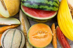 Den mangfoldige melonen