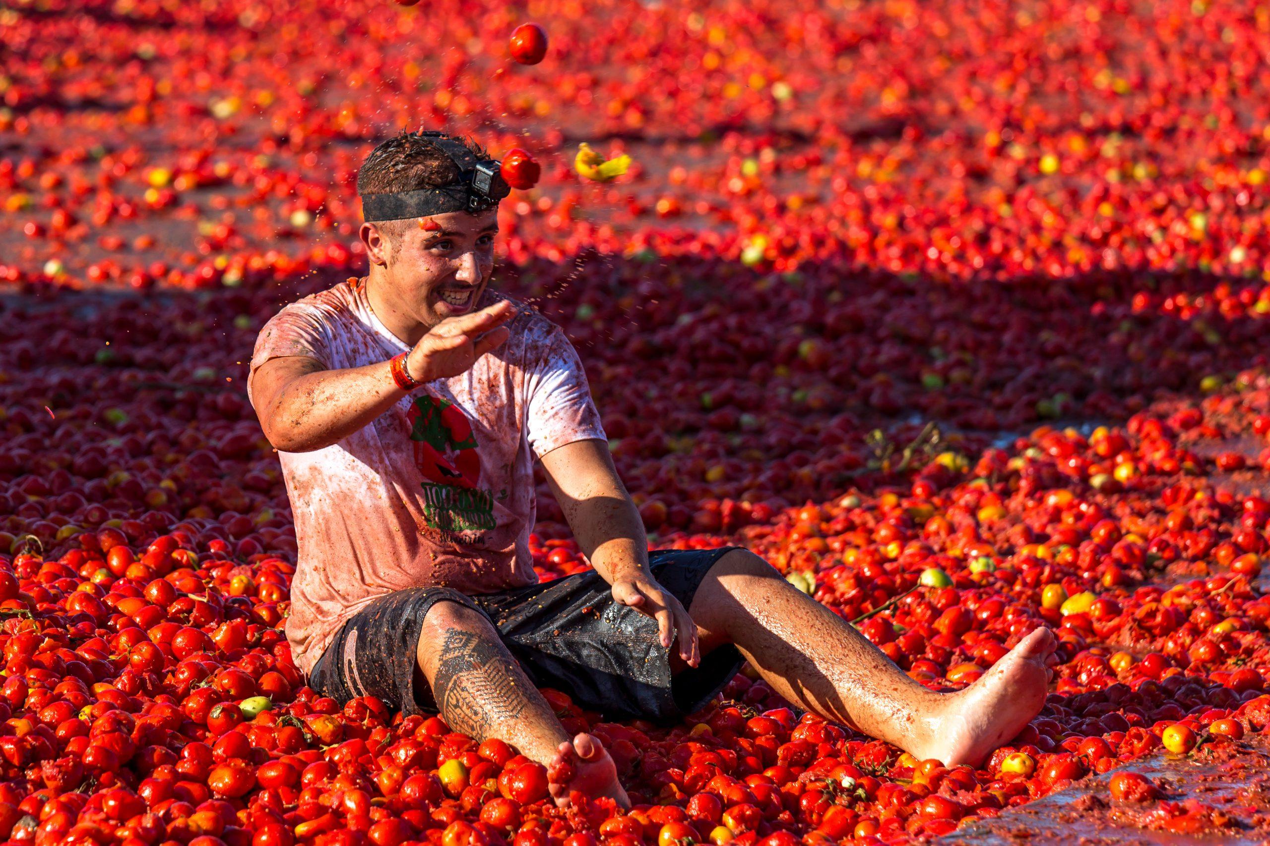 Den røde tomatkrigen