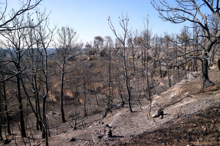 Ny røyk og nødhjelpsfase i Sierra Bermeja