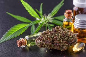 Spansk nei til cannabis
