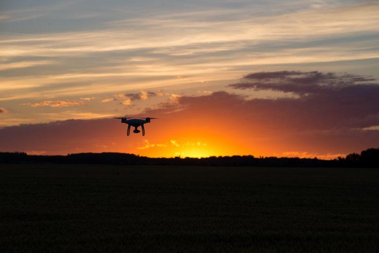 Drone leverer mat til kjæledyr strandet i lavaen